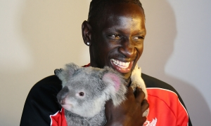 Reds meet koalas at 'Anfield Road'
